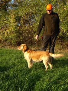 Wchtelhund-Rüde Jaspa vom Zerling
